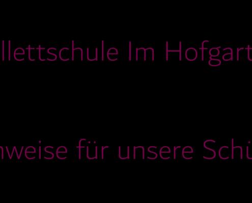 Hinweise-fuer-unsere-Schueler
